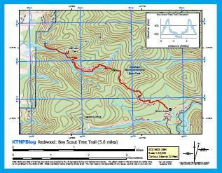 Redwood: Boy Scout Tree Map Thumbnail