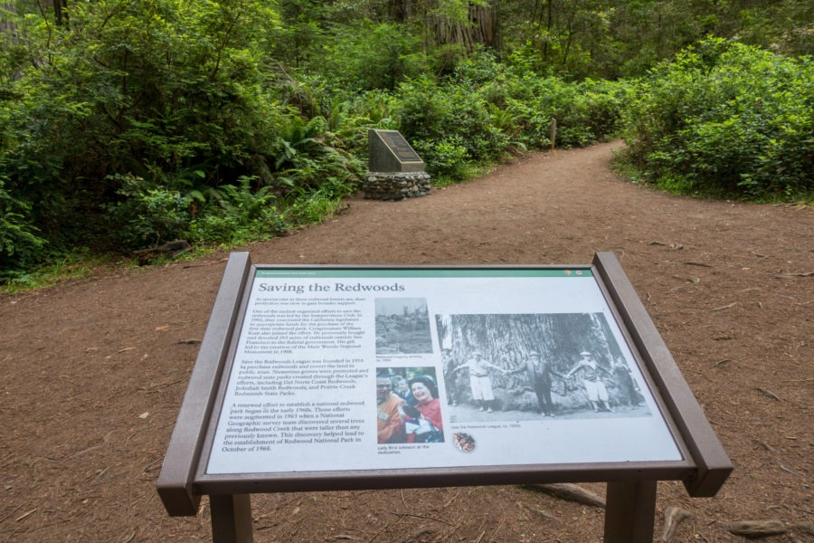Redwood: Plaques at Lady Bird Johnson Grove