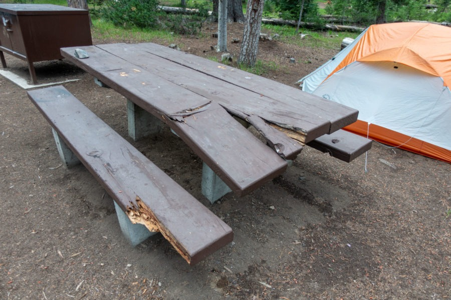 Crater Lake: Damaged Table at Mazama Campground Site G11