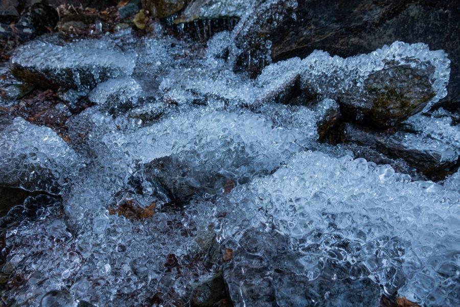 Shenandoah: Ice Closeup on Passamaquoddy Trail