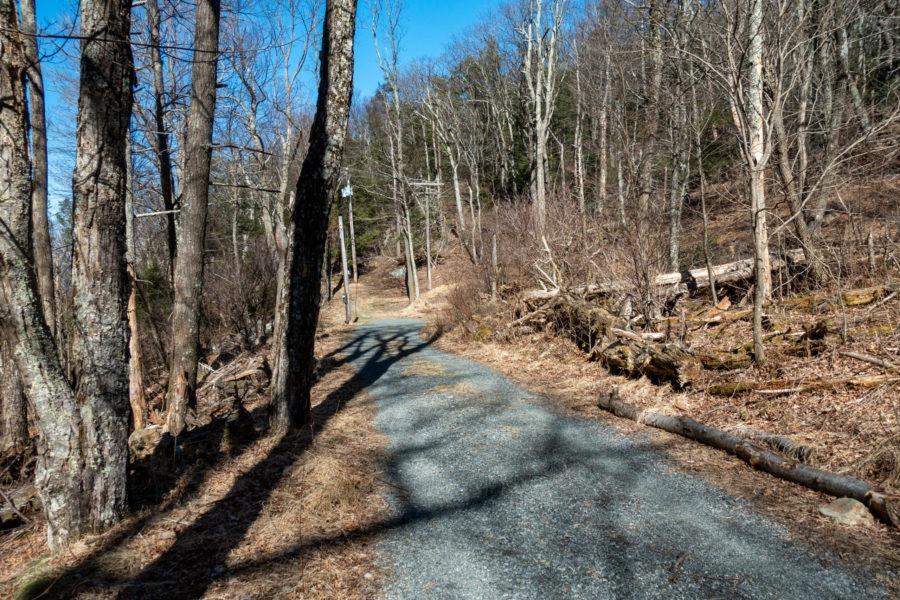 Shenandoah: Start of Furnace Spring Trail