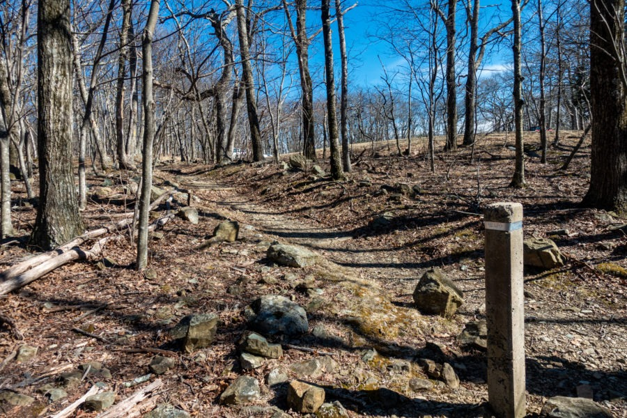 Shenandoah: End of Furnace Spring Trail