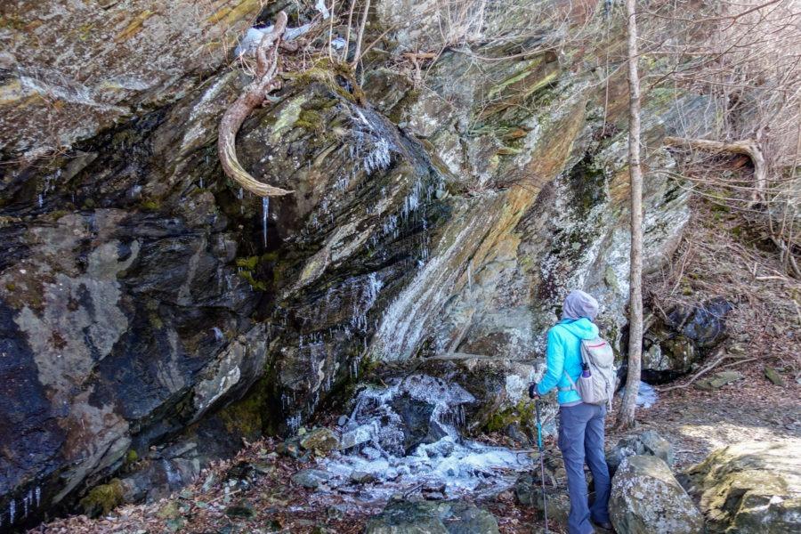 Shenandoah: Icicles on Passamaquoddy Trail