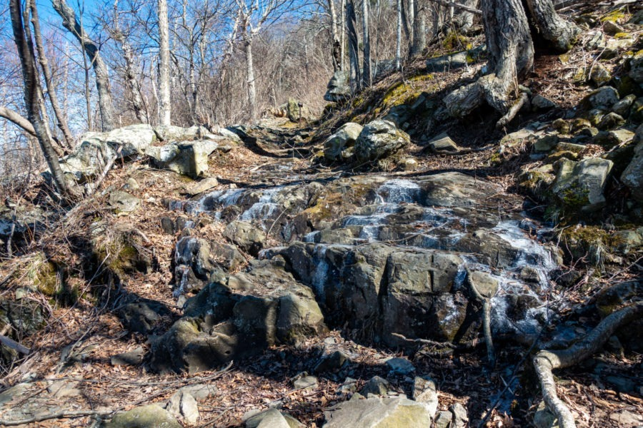 Shenandoah: Icy Spot on Passamaquoddy Trail