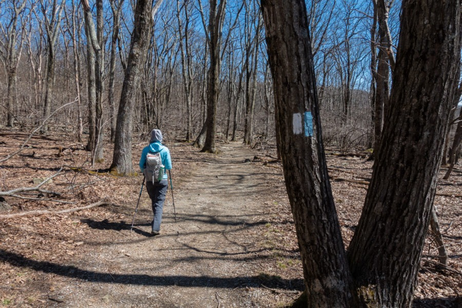 Shenandoah: Appalachian Trail Blazes