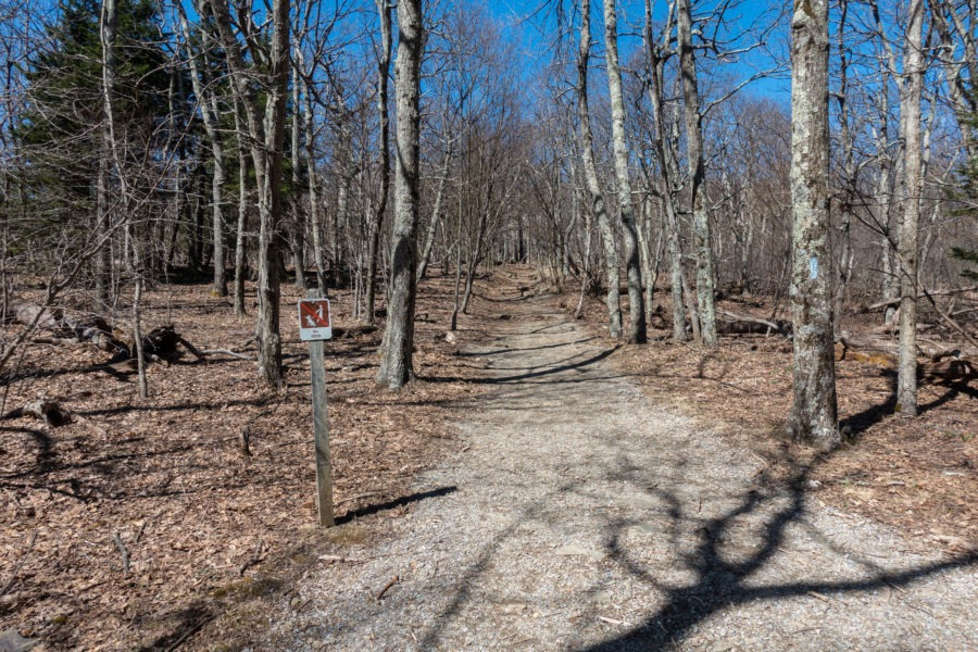 Shenandoah: Stony Man Trail