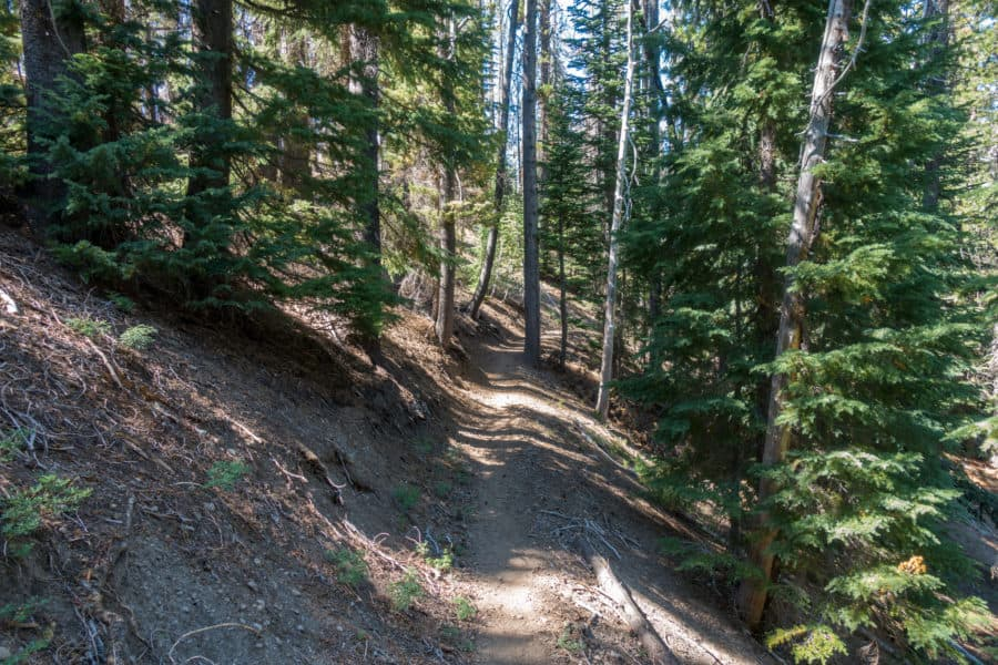 Crater Lake: Slopped Boundary Springs Trail