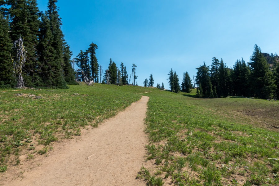 Crater Lake: Open Meadow Area at Start of Garfield Peak Hike