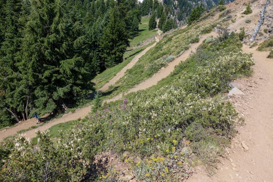 Crater Lake: Switchbacks on Garfield Peak Trail