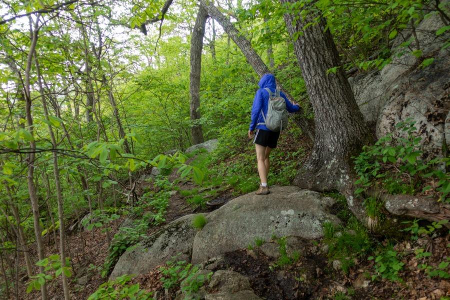 Shenandoah: Laurel Prong Trail in Rain