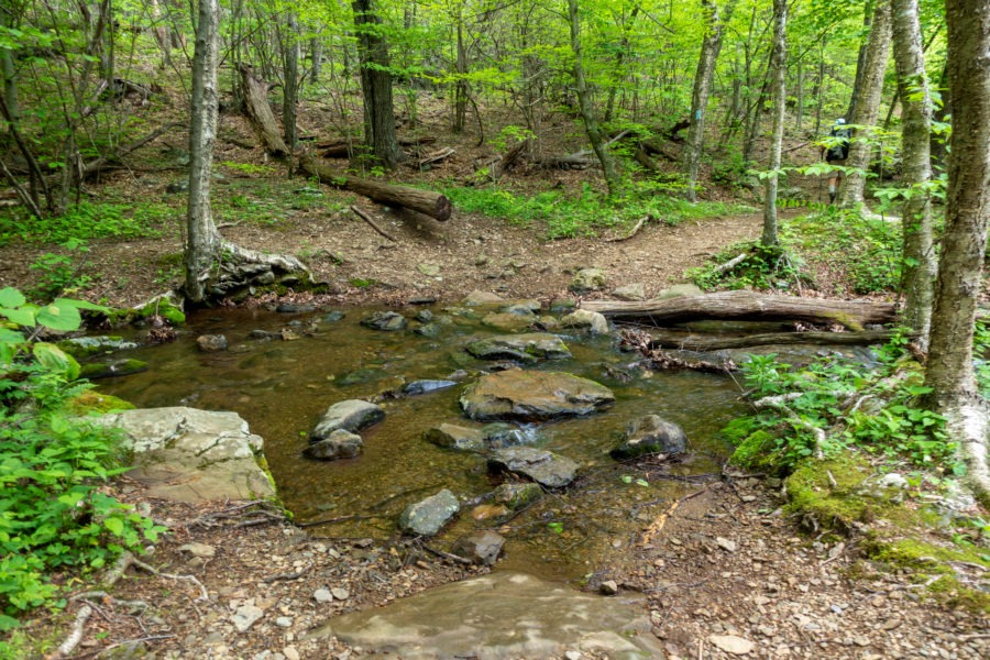 Shenandoah: Stream Crossing On Mill Prong Trail