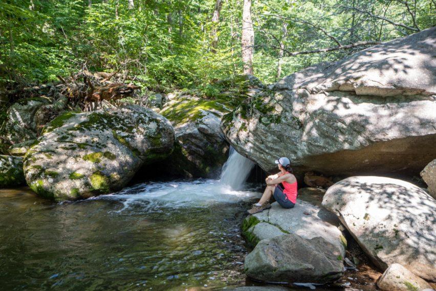 Shenandoah: Waterfall Along Nicholson Hollow Trail