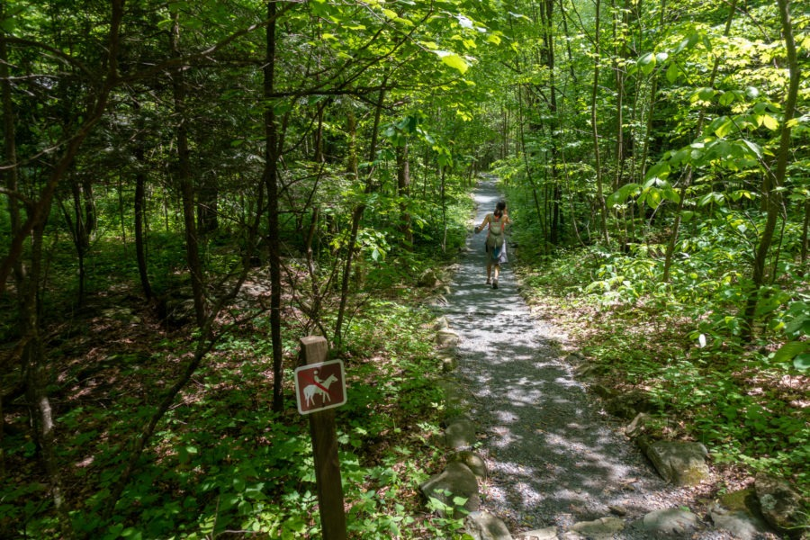 Shenandoah: Gravel Path to Rapidan Camp