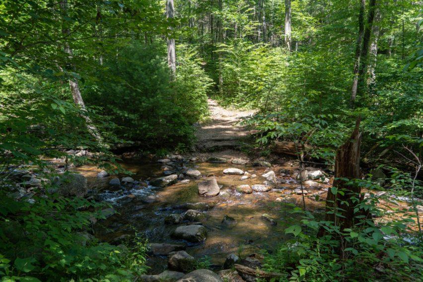Shenandoah: Hazel River