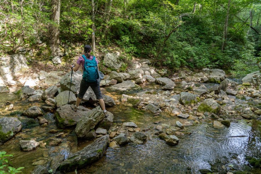 Shenandoah: Riprap Trail Crossing Meadow Run