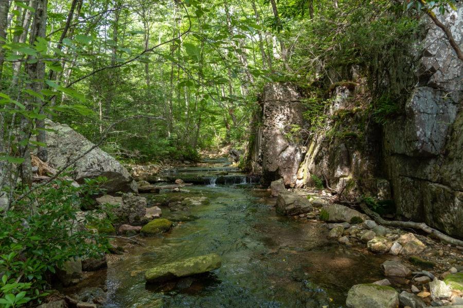Shenandoah: Meadow Run Running Through Gorge Area