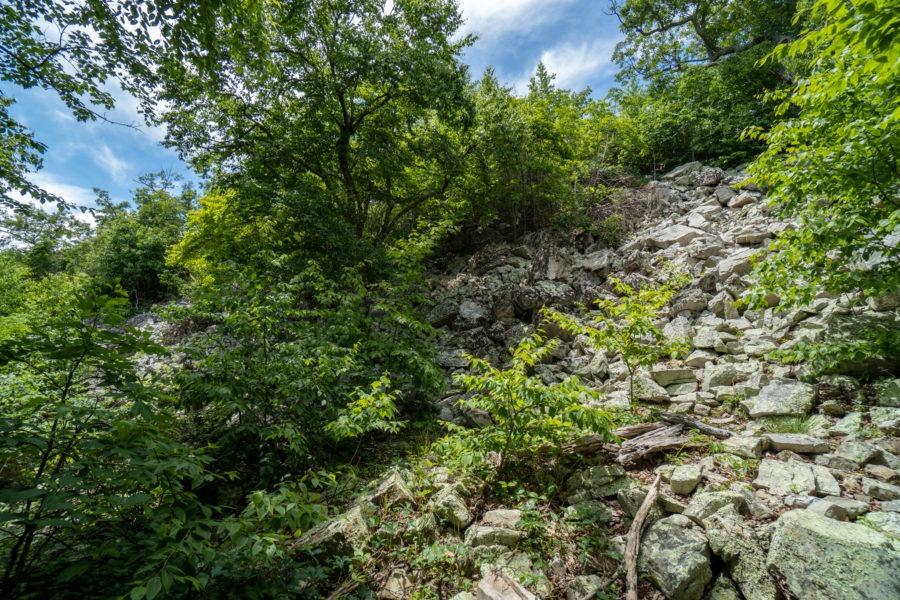 Shenandoah: Talus Field on Riprap Trail
