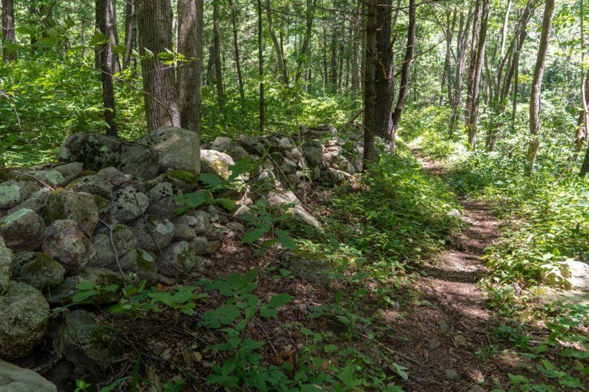 Shenandoah: Old Stone Wall on Hannah Run Trail