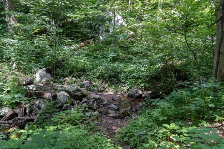 Shenandoah: Stream Crossing Hannah Run Trail