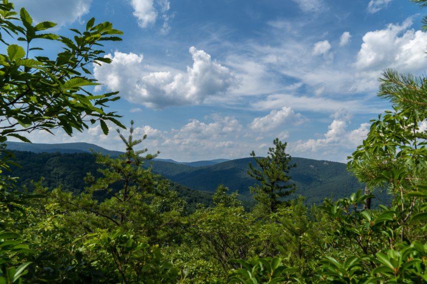 Shenandoah: View North on White Rocks Trail