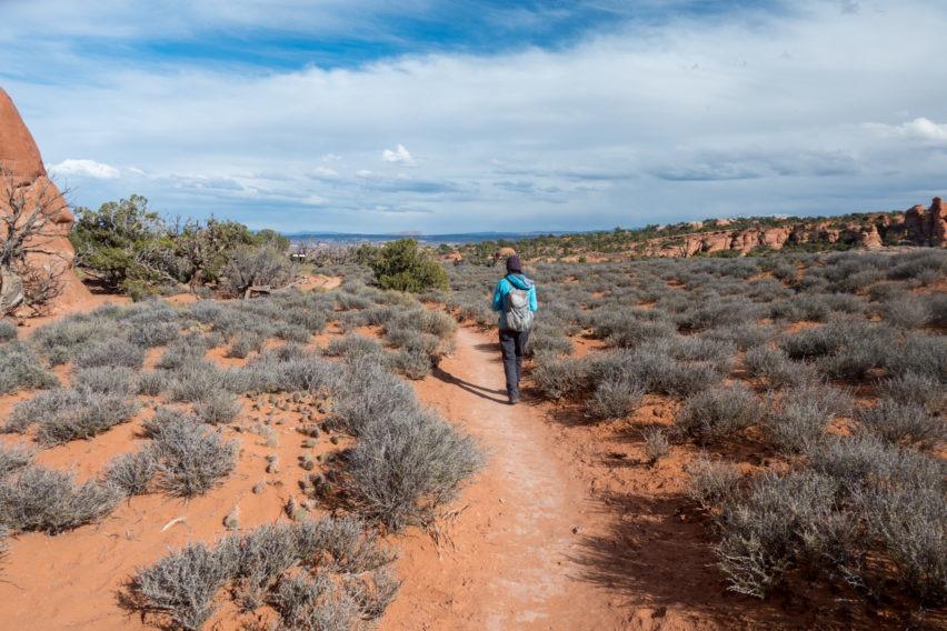 Arches: Trail Through Prairie