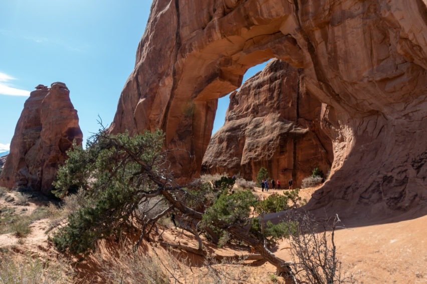 Arches: Backside of Pine Tree Arch