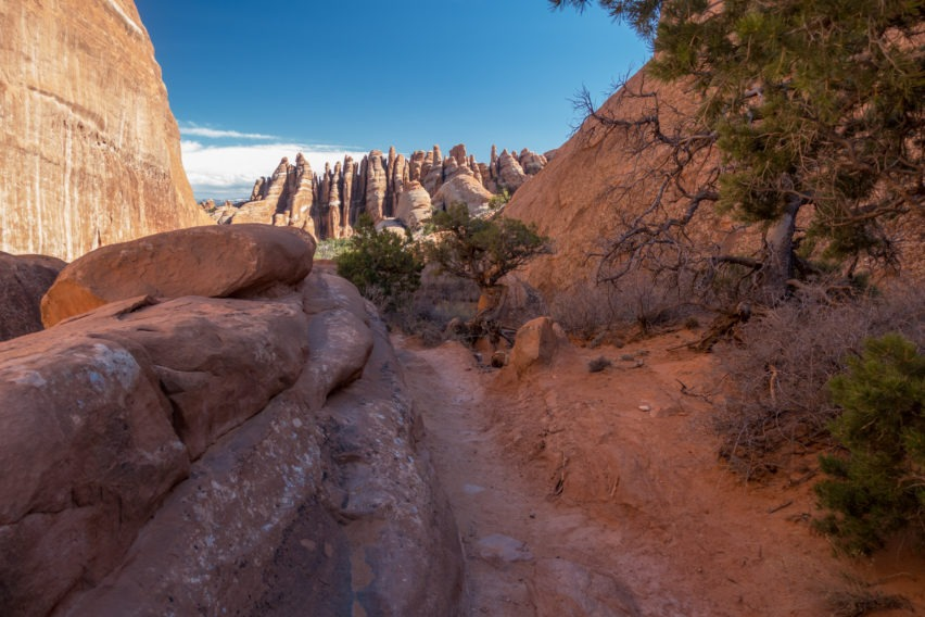 Arches: Primitive Trail with Fins in Distance