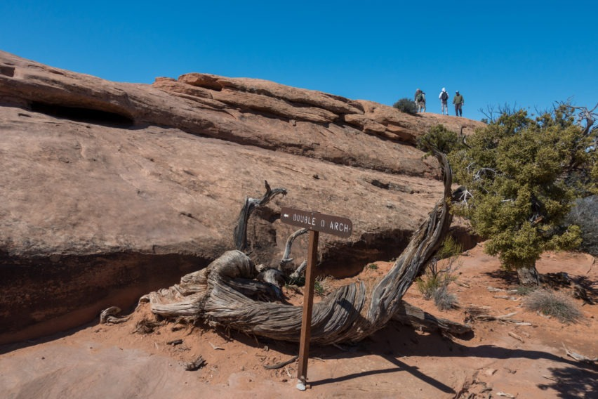 Arches: Sandstone Fin on Way to Double O Arch